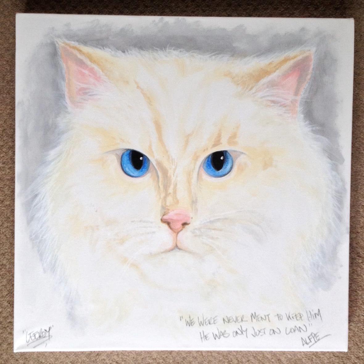 Cat ~ Pet Portrait