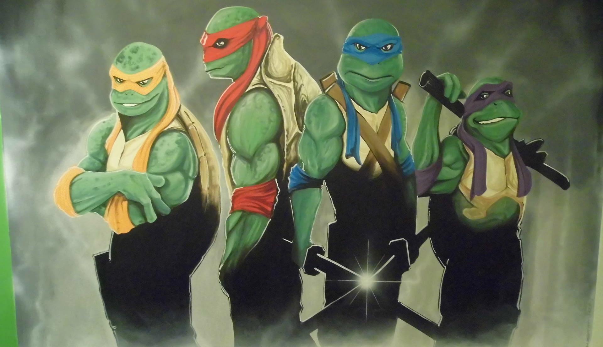 Heroes in a half shell (TMNT) Mural