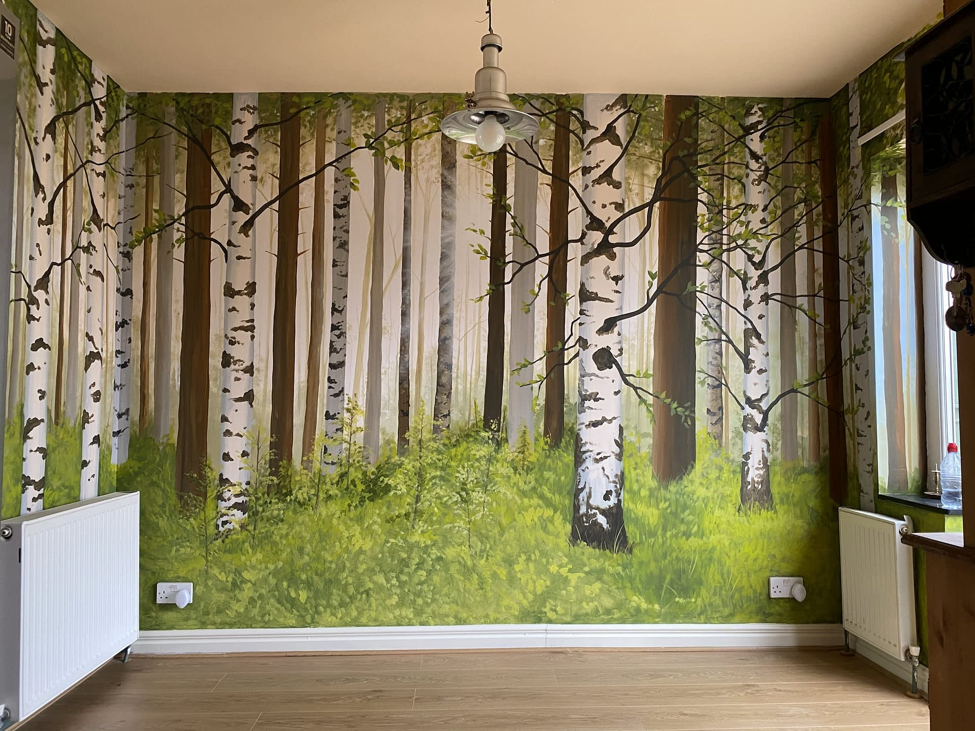 Silver Birch Feature wall
